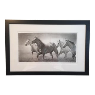 David Bjurstrom Framed Horses Drawing For Sale