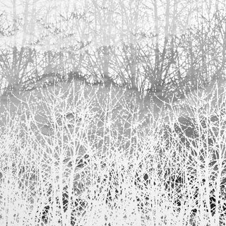 Schumacher x Vera Neumann Birches Wallpaper in Silver (9 Yards) For Sale