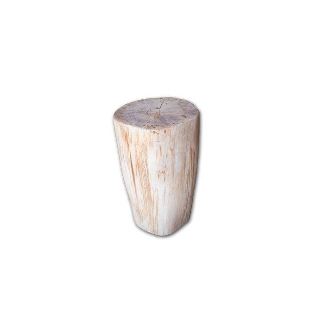 Petrified Wood Stool - Image 3 of 4