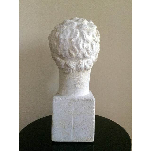 Lifesize Plaster Bust of Hermes For Sale - Image 5 of 11