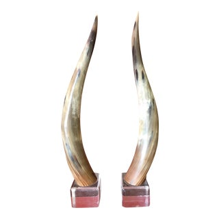 Texas Longhorns Cattle Horns on Lucite Bases - A Pair For Sale