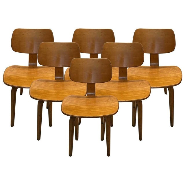 Brown Vintage Mid Century Thonet Bent Plywood Chairs- Set of 6 For Sale - Image 8 of 8