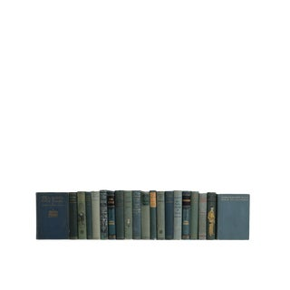 Vintage Decorative Novels in Tourmaline Blue