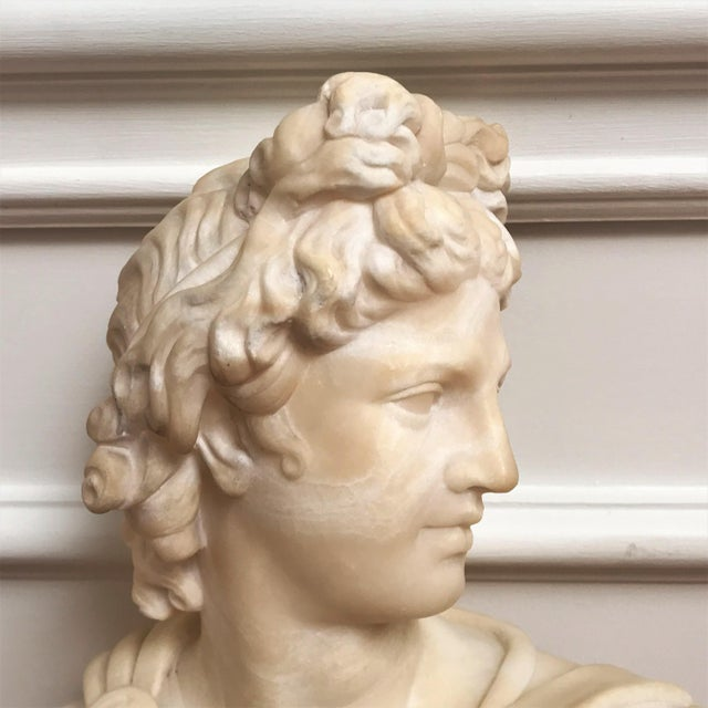19th Century Italian Grand Tour Souvenir Bust of the Apollo Belvedere For Sale - Image 12 of 13