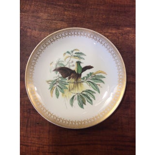 Early 20th Century Mottahedeh Birds of Paradise Salad Plates - Set of 6 Preview