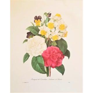 Pierre-Joseph Redouté Reproduction Camelia Bouquet Botanical Print For Sale