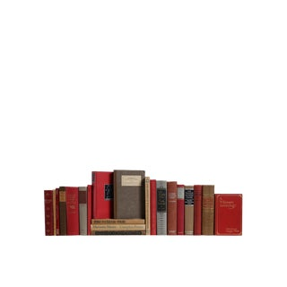 Brick & Mortar Poetry : Set of Twenty One Decorative Books For Sale