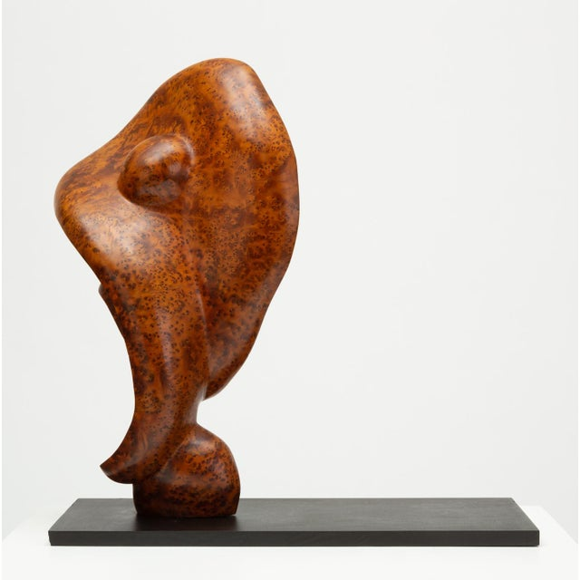 Mahogany Mounted Abstract Sculpture in Bird's Eye Mahogany For Sale - Image 7 of 7