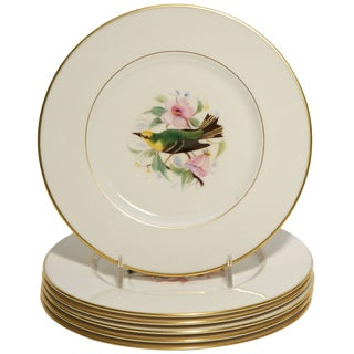 Eight Dessert Plates Hand-Painted, Artist Signed, Delightful Songbirds For Sale