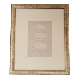 1870's Vintage English egg lithograph by Morris For Sale