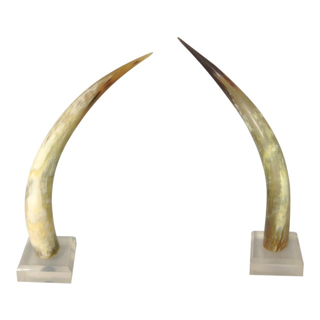 1960s Horns - A Pair - Image 1 of 5