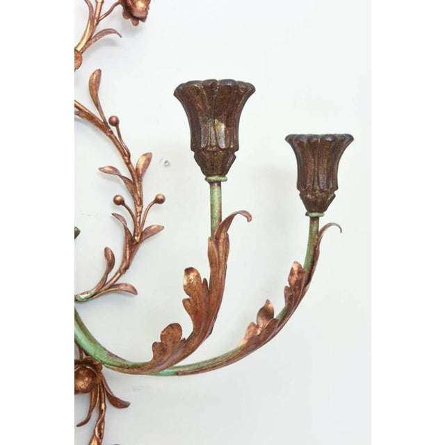 1950s Pair of Italian Painted and Gilded Iron Foliate Sconces For Sale - Image 5 of 9