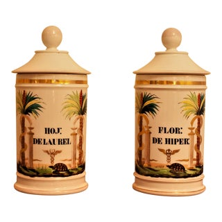 Old Paris Apothecary Jars, France Circa 1820 - a Pair For Sale