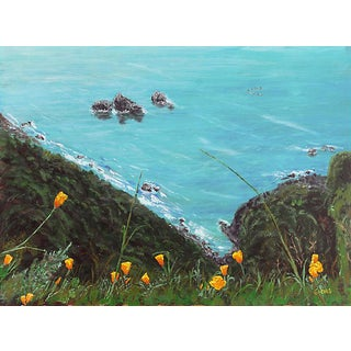 California Poppies at Big Sur, 1960s For Sale