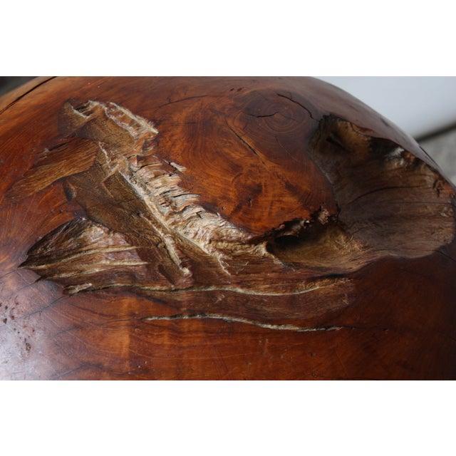 Midcentury Redwood Burl Sphere Sculpture For Sale - Image 9 of 13