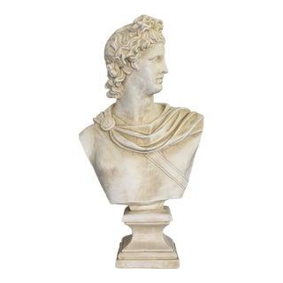 Apollo Belvedere Plaster Bust For Sale