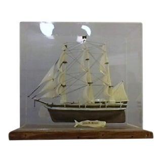 Model Ship in Case