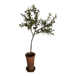 Faux Rosemary Potted Topiary