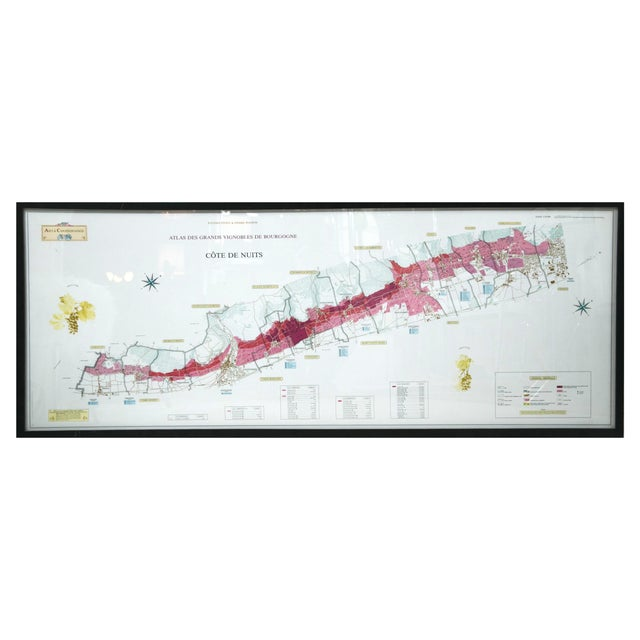Framed French Topographical Map of Wine Region For Sale