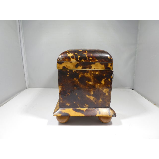 Brown 19th Century Tortoise Shell Tea Caddy For Sale - Image 8 of 13