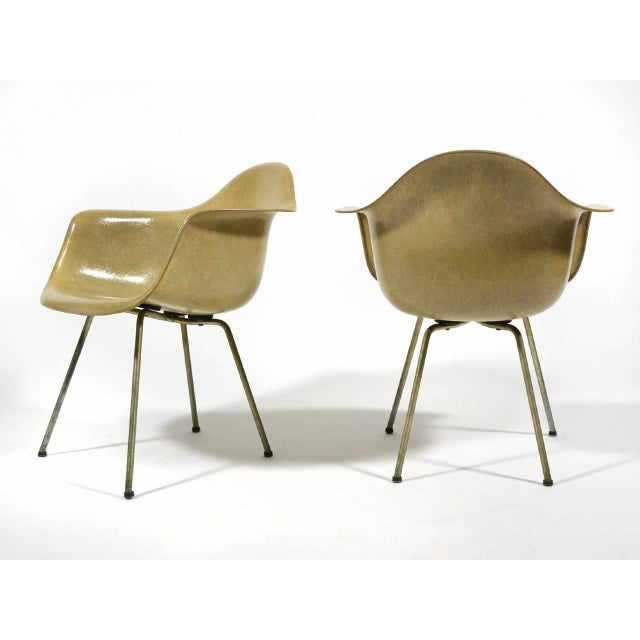 Pair of Eames SAX Armchairs by Zenith Plastics for Herman Miller - Image 8 of 11