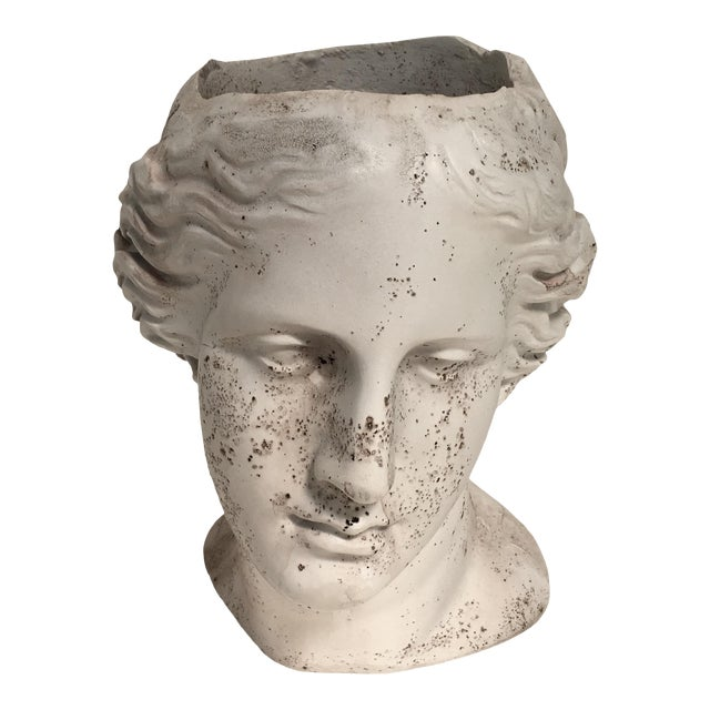 Weathered Venus Bust Head Planter For Sale