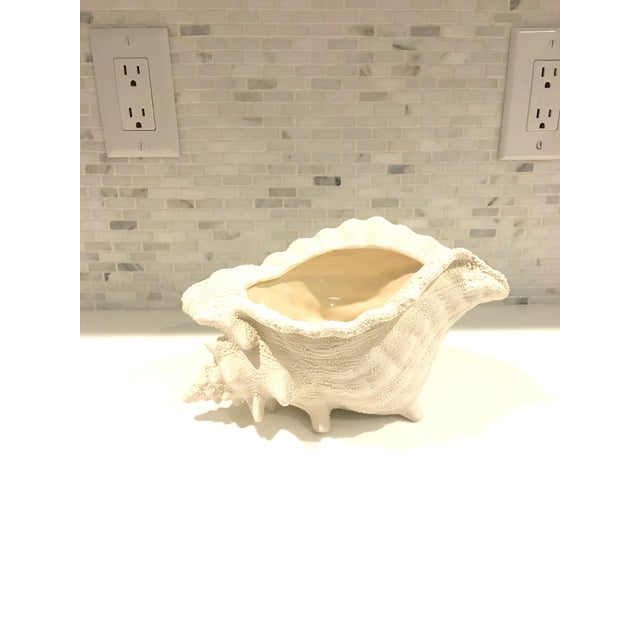 Ceramic Textured Cream Conch Shell Planter - Image 2 of 6
