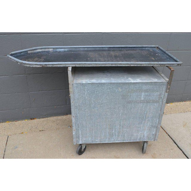 Bar on Wheels / Potting Table / Plant Stand from Galvanized Vet Exam Table - Image 3 of 10