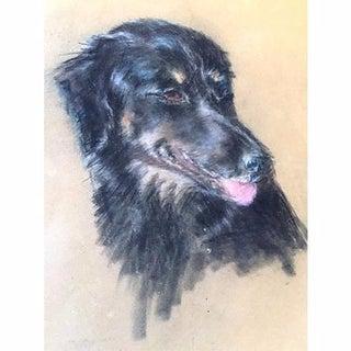 Vintage Pastel Portrait of a Dog For Sale