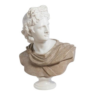 Italian Marble Bust of Ancient Greek God Apollo Belvedere For Sale