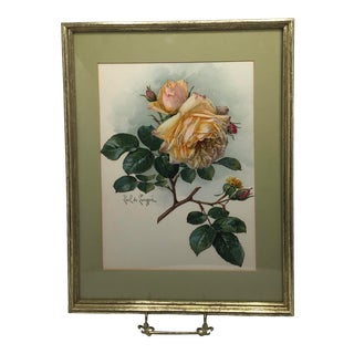 1905 Paul De Longpre Roses Framed Lithograph Printed by the Grey Co. New York For Sale