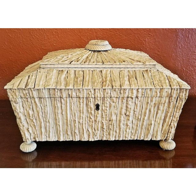 19c Anglo Indian Vizagapatam Stag Antler Horn Sewing Box - Exceptional For Sale - Image 11 of 11