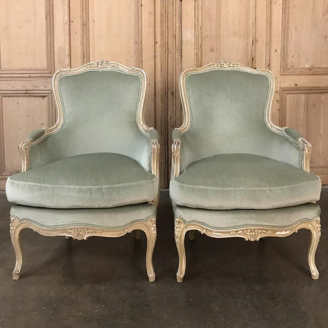 Louis XV Pair 19th Century French Louis XV Bergeres ~ Armchairs For Sale - Image 3 of 12