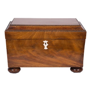 Early 19th Century George IV Mahogany Double-Bowl Tea Caddy For Sale
