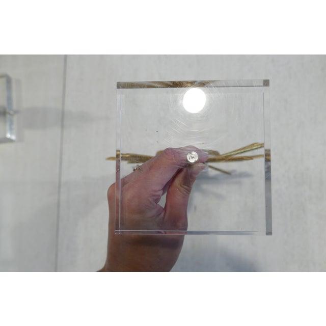 Gold Agate & Gold Leaf Starburst Tabletop Sculptures - Set of 3 For Sale - Image 8 of 9