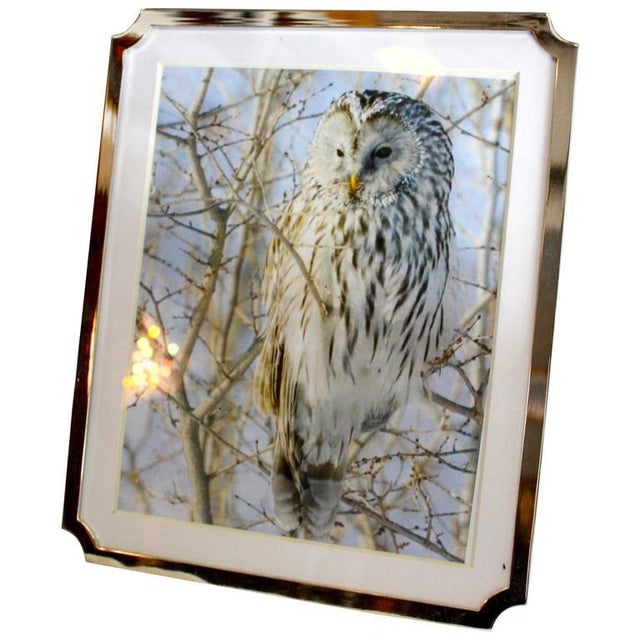 """A beautiful frame to display your most treasured photo. Silver plate frame, 8""""x10"""" with matte."""
