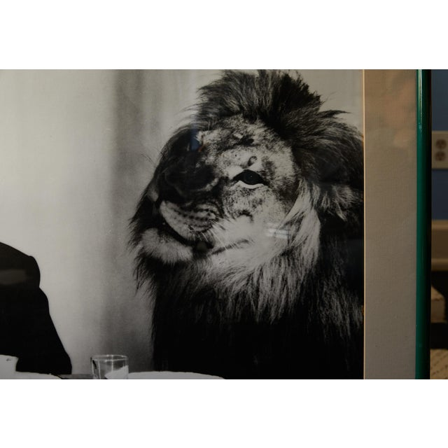 Photograph of Alfred Hitchcock and m.g.m. Lion by Clarence Sinclair Bull For Sale In Atlanta - Image 6 of 8