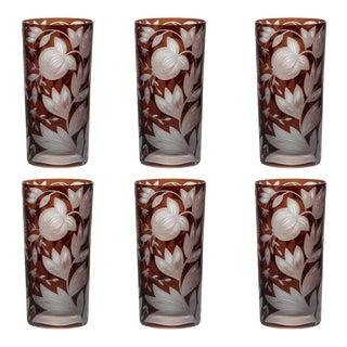 Verdure Highball Glasses, Set of 6, Mahogany For Sale