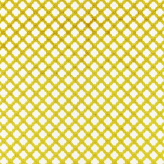 Scalamandre Pomfret Fabric in Chartreuse Sample For Sale