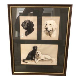 Black and Yellow Lab Art Pencil Drawing by Susan Preedy For Sale