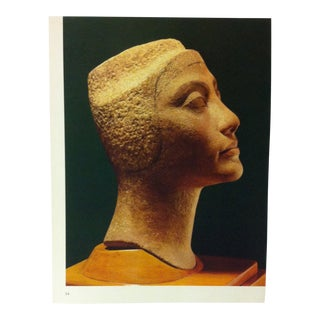 """Circa 1970 """"Queen Nafertiti"""" Great Sculpture of Ancient Egypt Print For Sale"""