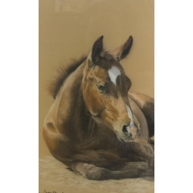 Valery Trozelle - young Horse Resting -Beautiful Painting - Image 2 of 6
