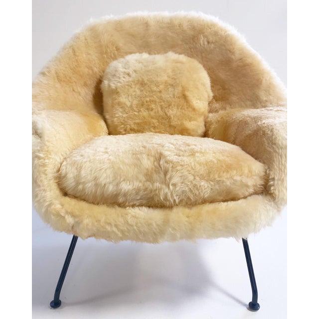 Mid-Century Modern Vintage Eero Saarinen Womb Chair and Ottoman, Restored in Texas Sheepskin For Sale - Image 3 of 8