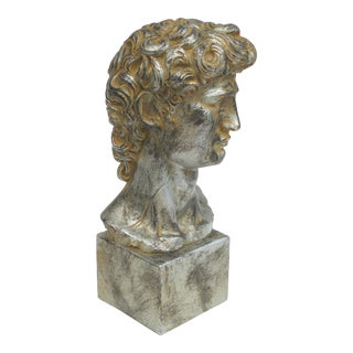 Plaster Bust of Michelangelo's David Signed A. Gianelli. For Sale