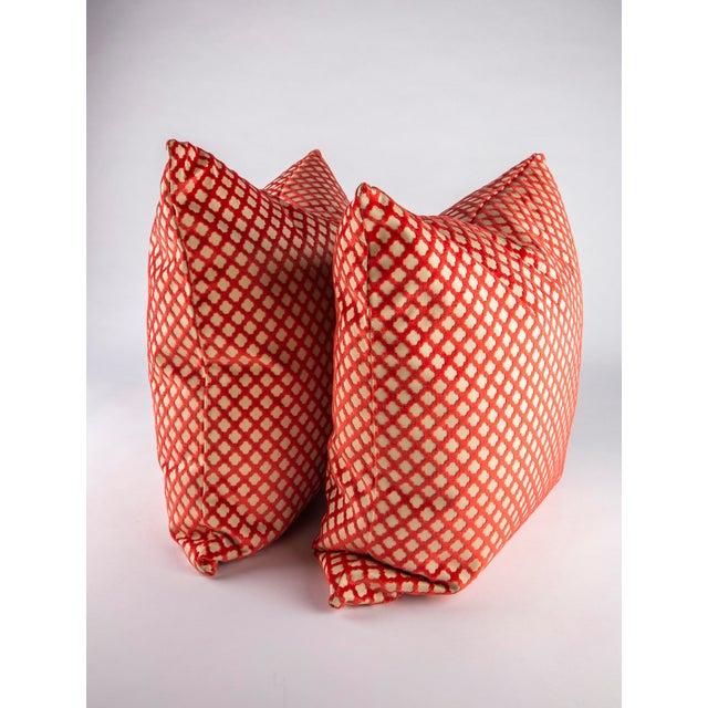 """Boho Chic 22"""" X 22"""" Velvet Scalamandre Pomfret Down Pillows For Sale - Image 3 of 8"""