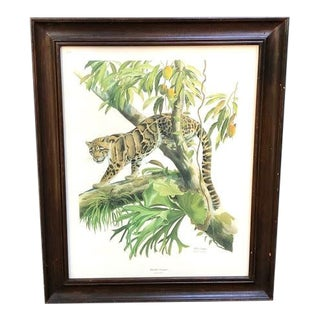 1970s Clouded Leopard Print Signed by Arthur Singer For Sale