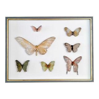 Framed Butterflies Assemblage Sculpture For Sale