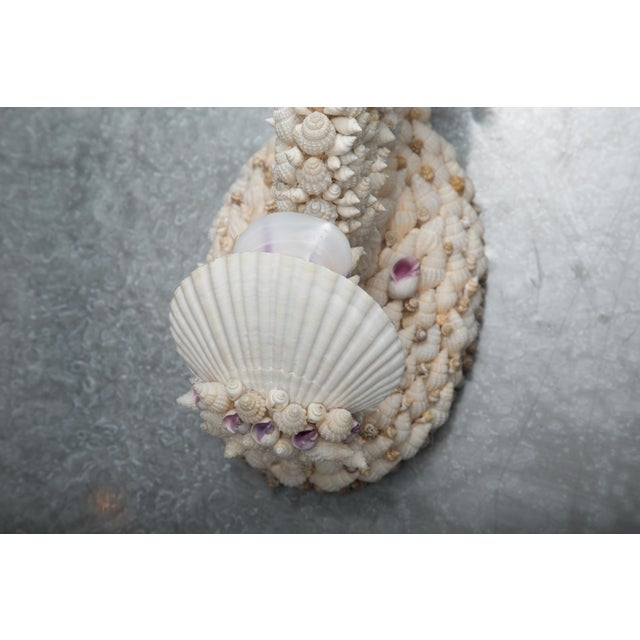 Shell Shell Art Sconces - a Pair For Sale - Image 7 of 9