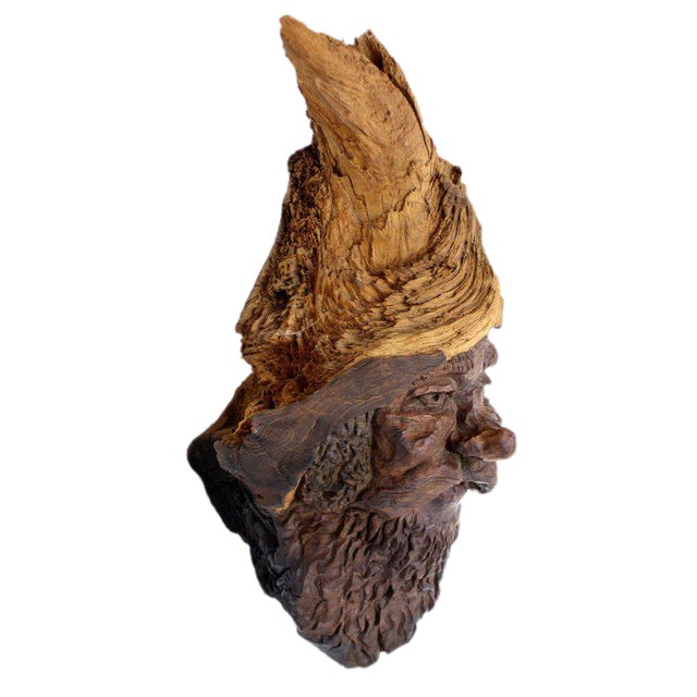 Detailed Burl Wood Carving of an Elf or Gnome Face Sculture - Image 1 of 9