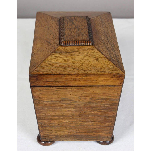 Regency Mahogany Sarcophagus Form Tea Caddie For Sale - Image 4 of 11